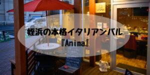 姪浜バーAnima